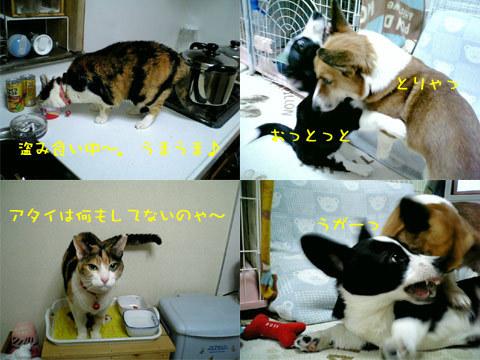 2006_03_01_2