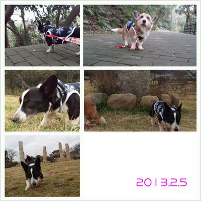 Photogrid_1360088501756_2