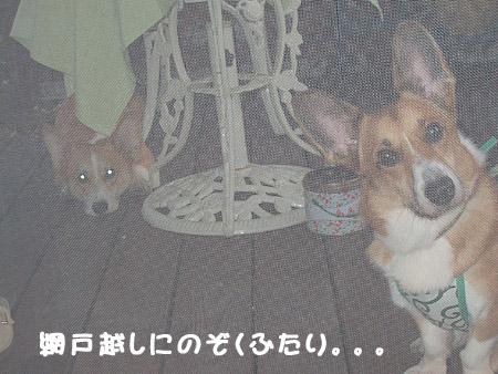 2005_09_18
