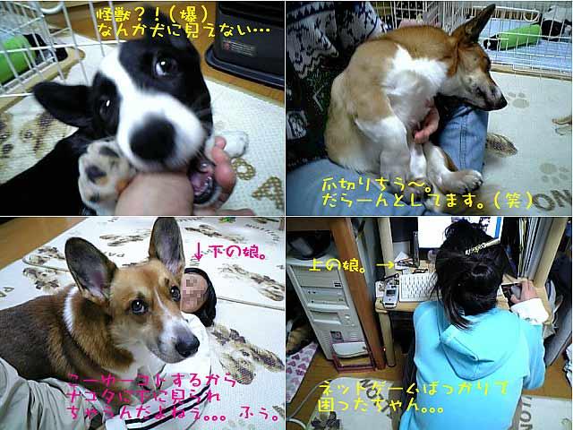 2006_01_09