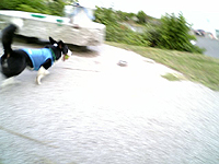 200706197