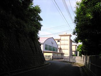 2008061302